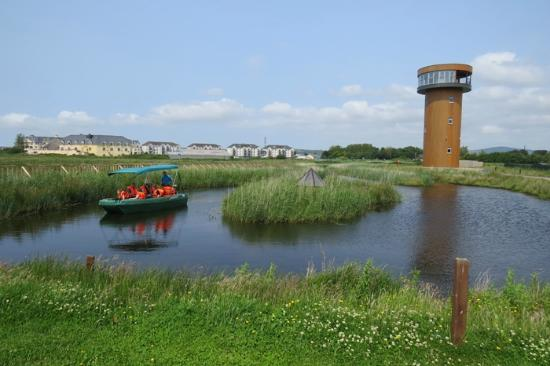 tralee-bay-wetlands-centre